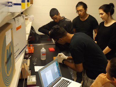 UBMS students in lab, Summer 2015